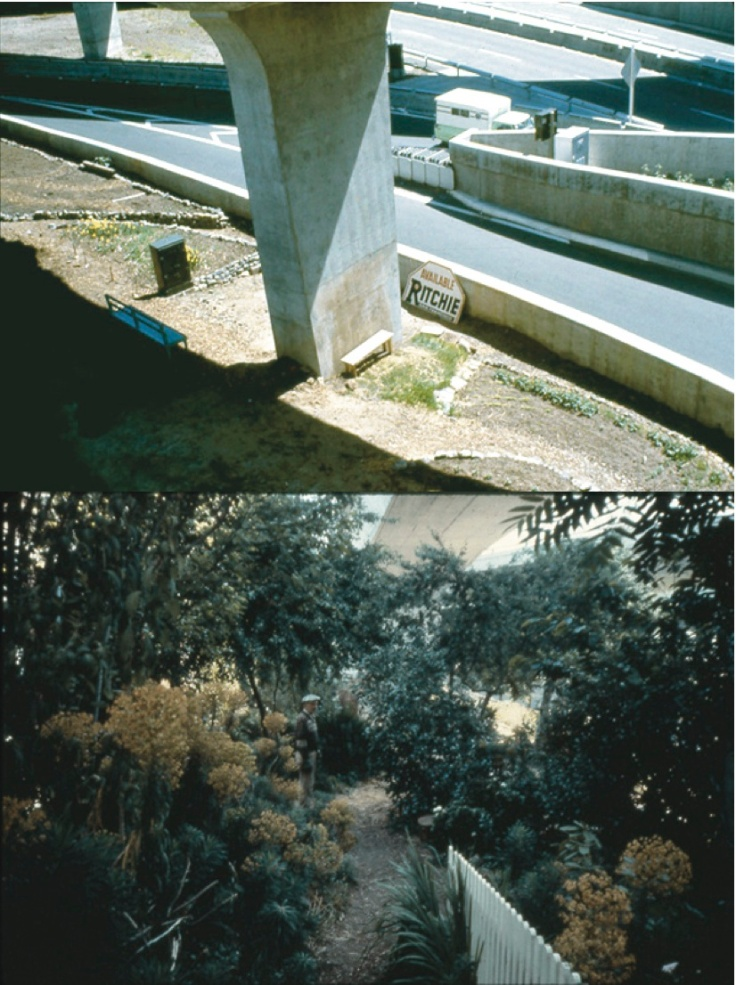 Scene from Crossroads Community (the farm) - BEFORE & AFTER - First Garden on State Land © 1975-1980 Bonnie Ora Sherk