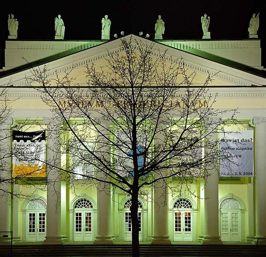 En av de 7000 eikene som Joseph Beuys plantet i Kassel.