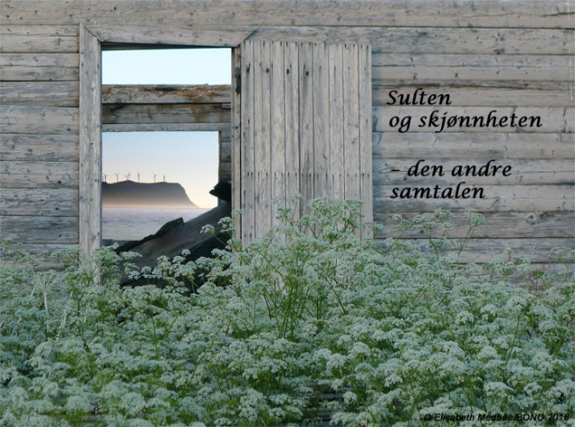 plakat-sultenogskjønnh2_m©72dpi