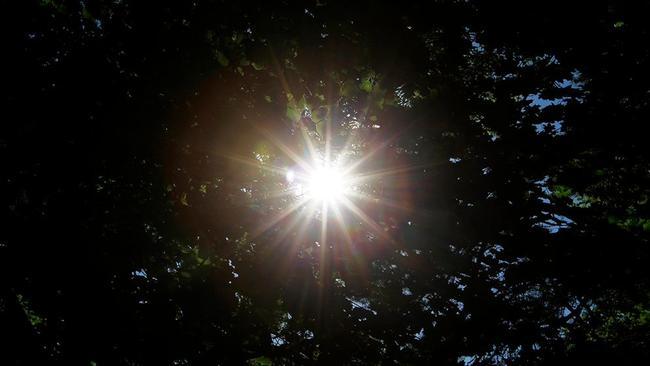 solen-jpg