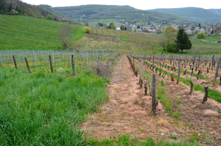 konventionelnaturvinmark-overgang-apr-26
